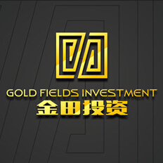 GOLD FIELDS INVESTMENT Ʒ���������