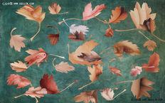 叶子拼贴出来的艺术作品