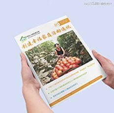 人口福利基金会·2017年7期·月刊设计